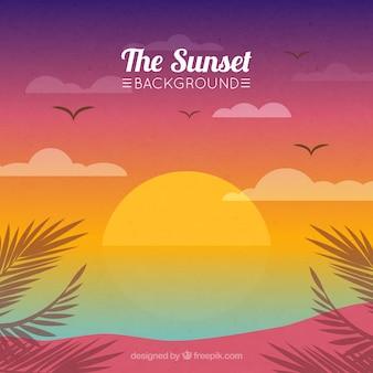 Plage de fond au coucher du soleil avec des palmiers