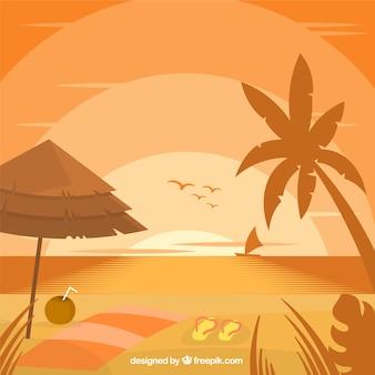 Plage de fond avec palmier et les oiseaux au coucher du soleil