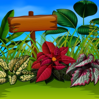 Planche de bois et feuilles