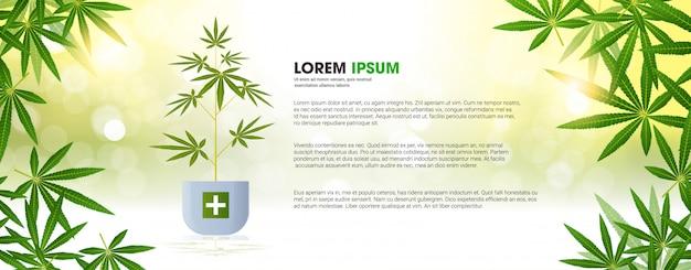 Plant De Cannabis Croix Verte Plantation De Marijuana Pharmacie De Soins De Santé à Partir De Cannabis Médical Industrie Pharmaceptique Concept Copie Espace Horizontal Plat Vecteur Premium