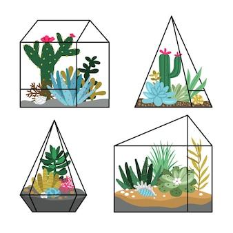 Plantation de terrariums floraux. jardins de dessins animés avec des plantes succulentes et des cactus, nature mignonne dessinée à la main dans des terrariums géométriques, concept d'illustration vectorielle de jardinage isolé sur blanc