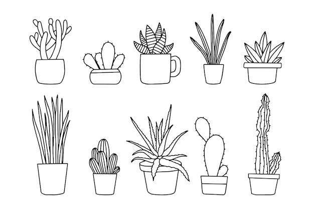 Plante dessinée à la main en pot isolé sur fond blanc. collection de dessins vectoriels