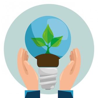 Plante écologique à l'intérieur sauver ampoule dans les mains