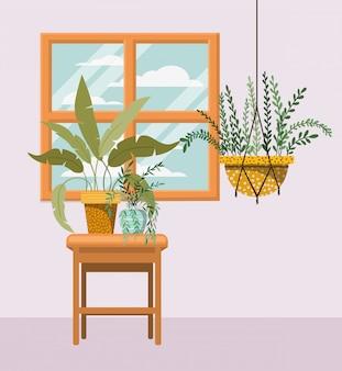 Plante d'intérieur dans le cintre en macramé avec fenêtre