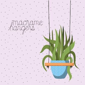 Plante d'intérieur dans des cintres en macramé