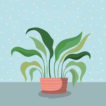 Plante d'intérieur en pot icône
