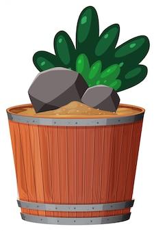 Plante en pot avec des feuilles vertes sur fond blanc isolé