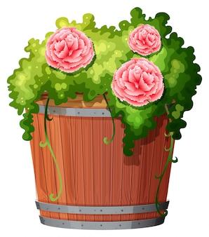 Plante en pot avec sol isolé