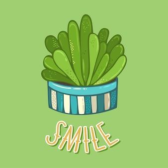 Plante succulente en pot de fleur sur fond vert