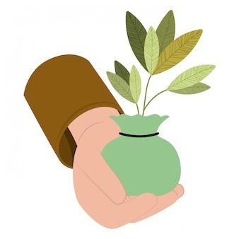 Planter en icône isolé à la main