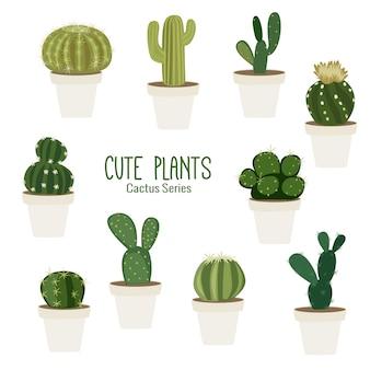 Plantes de cactus tropicaux mignons