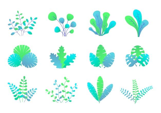 Plantes, feuilles et brindilles de style abstrait.