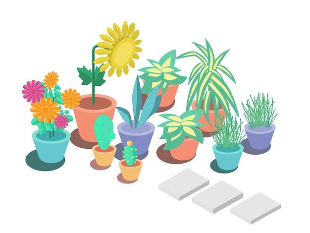 Plantes de fleurs ornementales de jardin isométrique coloré