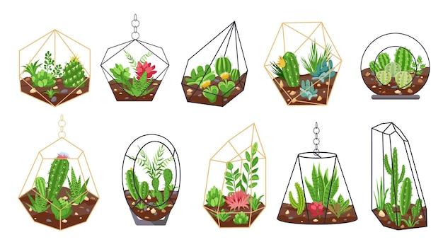Plantes florales. cactus tropicaux, fleurs et plantes succulentes dans des terrariums géométriques en verre. intérieur botanique. ensemble de vecteurs de mini jardins. cactus succulent de florarium, illustraton botanique d'été d'usine