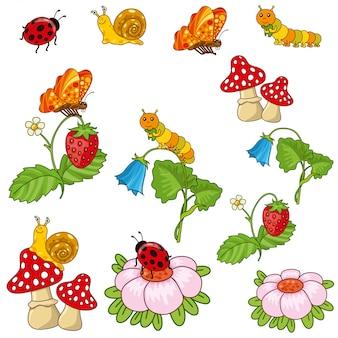 Les plantes et les insectes.