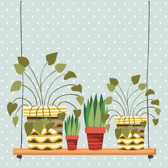 Plantes d'intérieur dans les cintres en macramé et balançoire