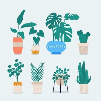 Plantes d'intérieur dessinées à la main dans la collection de pots