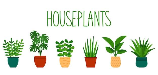 Plantes d'intérieur en pots dans un style plat et lettrage à la main, illustration vectorielle