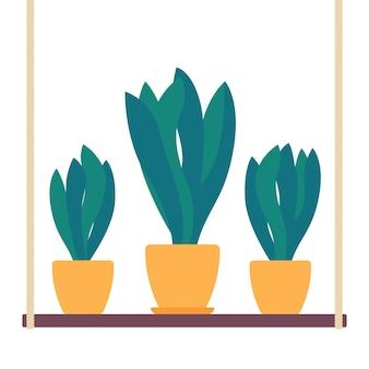 Plantes d'intérieur en pots sur l'étagère, vecteur