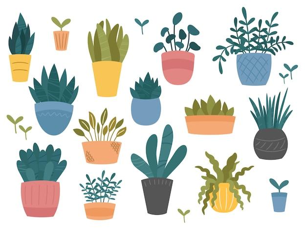 Plantes de jardin en pot décoratives, style hygge scandinave.