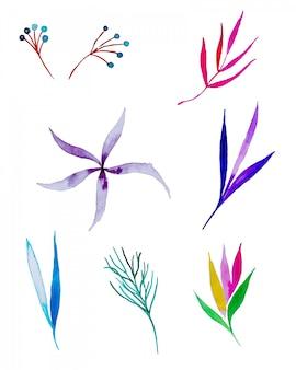 Plantes peintes à l'aquarelle