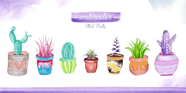 Plantes en pot aquarelle