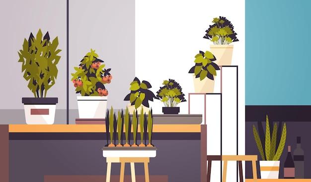 Plantes en pot à effet de serre sur étagère concept de jardinage à la maison salon illustration vectorielle horizontale intérieure