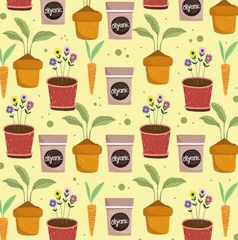 Plantes en pot légume bio