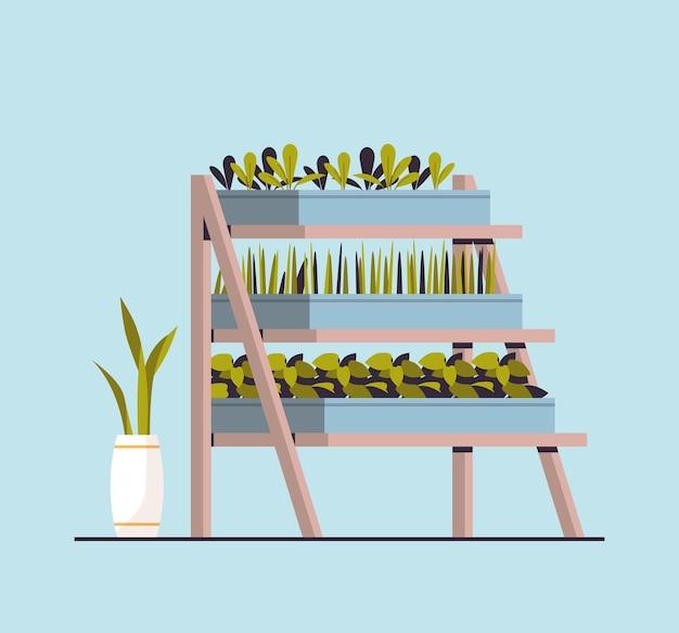 Plantes de serre plantes en pot sur étagères concept de jardin à la maison