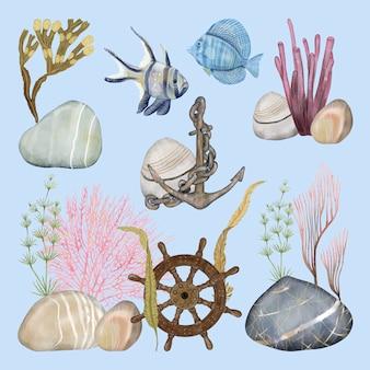 Plantes sous-marines et décorations anciennes