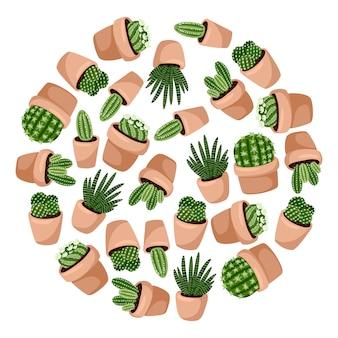 Plantes succulentes dans la composition du cercle