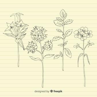 Plantes à tige sur fond de papier rétro