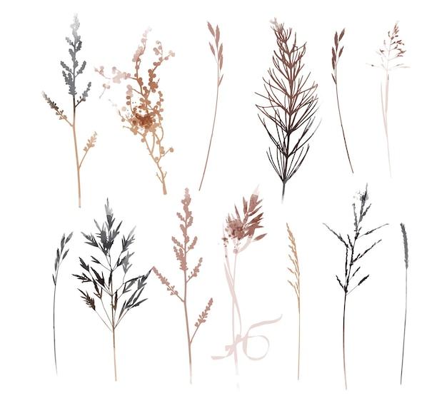 Plantes vectorielles et illustration de jeu d'herbes. illustration à l'aquarelle.