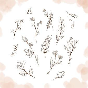 Plantes vintage dessinées à la main, fleurs, éléments floraux