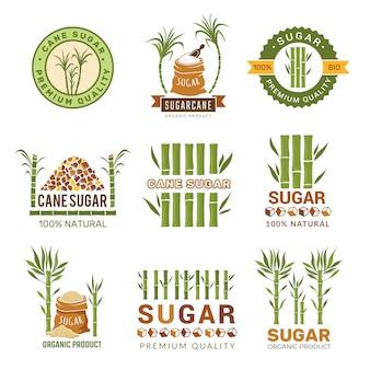 Plants de canne à sucre, récolte ferme bonbons granulés feuille symboles de production isolés