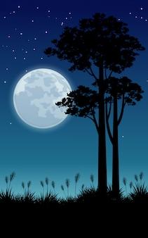 Pleine lune et arbres par belle nuit