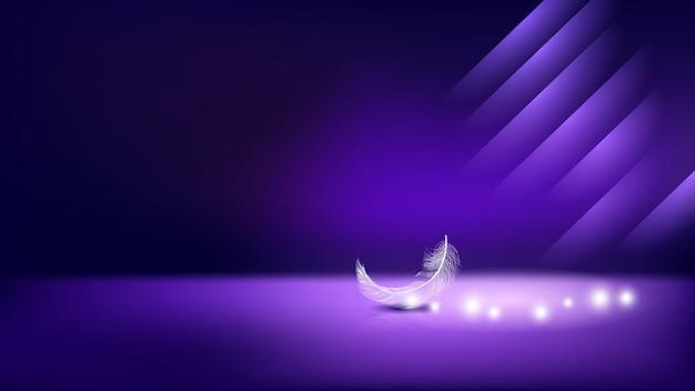 Plume d'oiseau et bannière lumineuse vecteur de fond