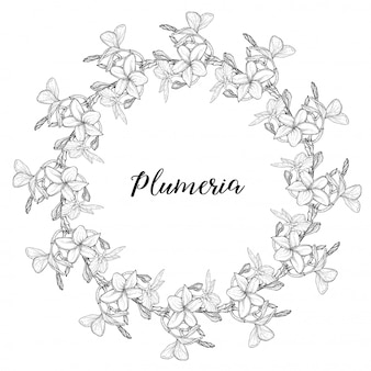 Plumeria. hawaï, bali, indonésie, sri lanka colliers de fleurs tropicales. illustration