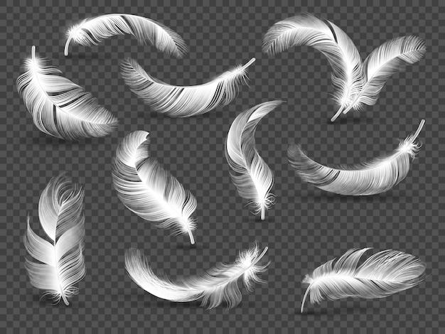 Plumes blanches. plume moelleuse tordue isolée sur transparent. ensemble réaliste