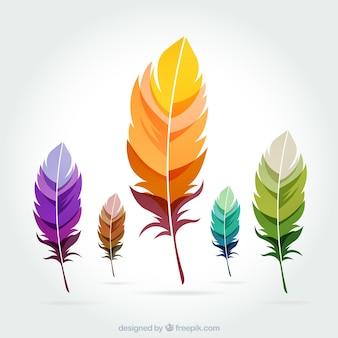 Plumes colorées