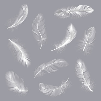 Plumes réalistes. plumes tourbillonnées blanches moelleuses, aile d'oiseau tombant plume en apesanteur, ensemble d'illustration de plume de poumon volant. plume blanche, collection réaliste douce et moelleuse