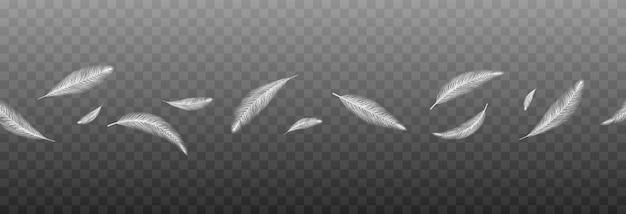 Plumes de vecteur sur un fond transparent isolé chute de plumes png plumes volantes png