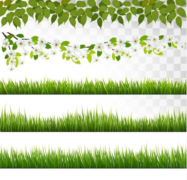 Plusieurs bordures d'herbe. vecteur.