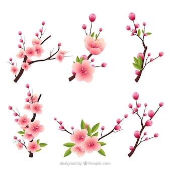 Plusieurs branches en fleurs dans le style réaliste