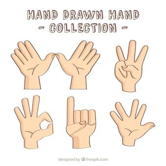 Plusieurs mains montrant des signes