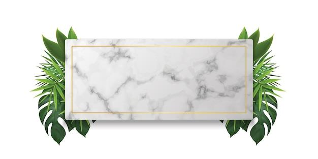 Podium de vitrine en marbre blanc avec des feuilles d'ombre