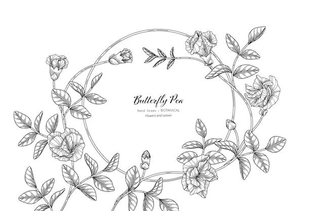 Pois papillon fleur et feuille illustration botanique dessinée à la main avec dessin au trait.