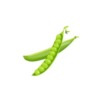 Pois verts riches en vitamines image vectorielle un élément pour la conception