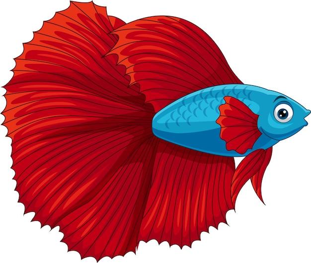 Poisson betta de dessin animé ou poisson de combat siamois