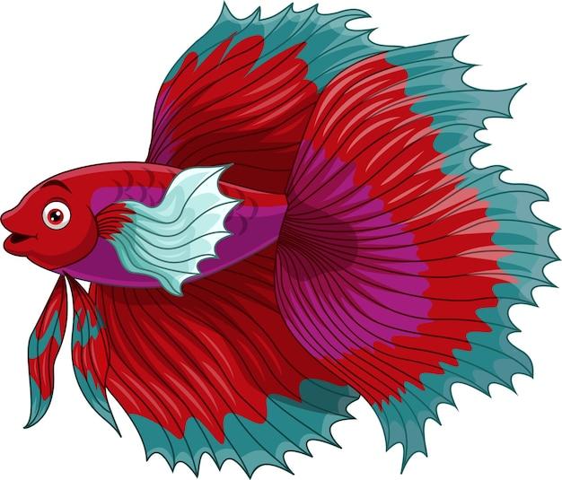 Poisson de combat siamois rouge de dessin animé